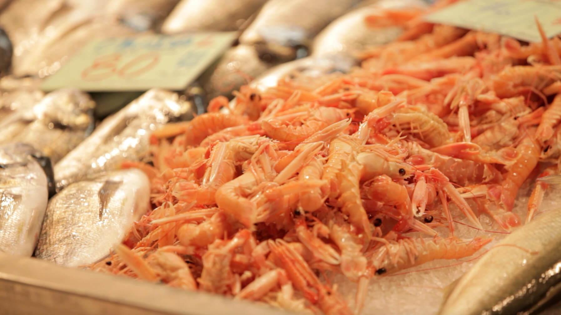Scampis auf Fischmarkt in Pula