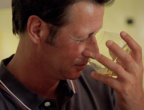 Chiavalon Olivenöl