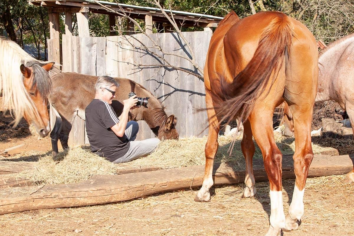 Lar-filmt-Tier-Drijade-Farm